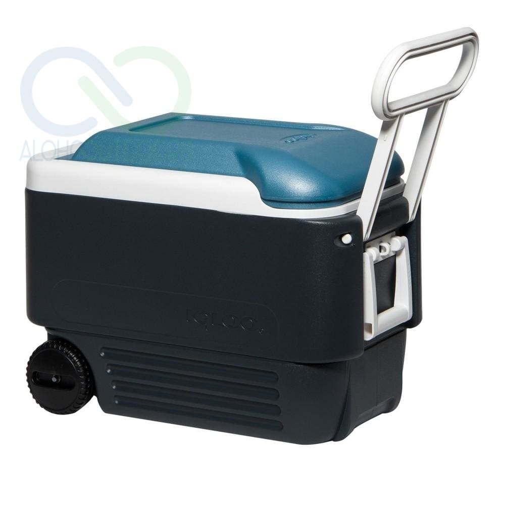 Igloo Maxcold 40 Roller Blue