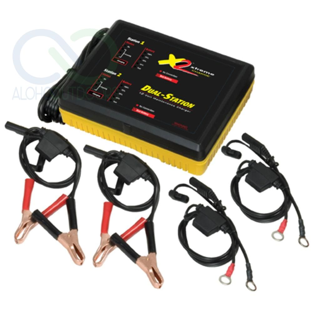 Pulsetech Xtreme Charger X2 100X200 X2