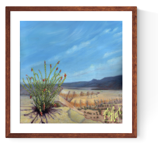 desert landscape - ocotillo on the road to Terlingua