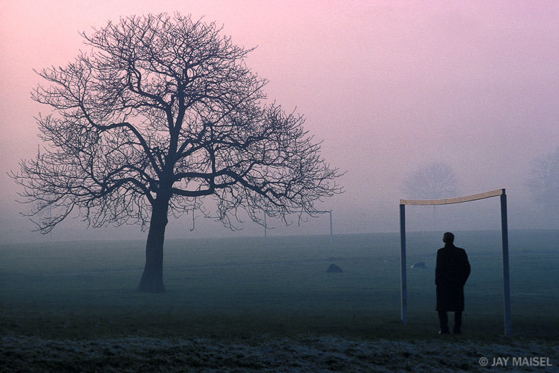 Tree and Goalposts