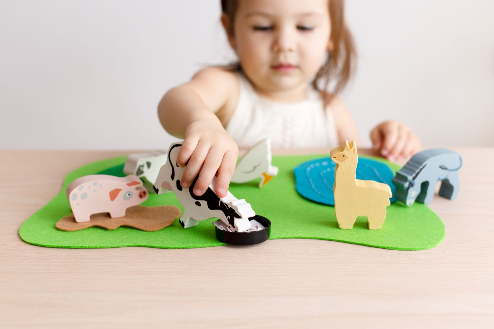Creative Play - DIY Felt Farm Activity