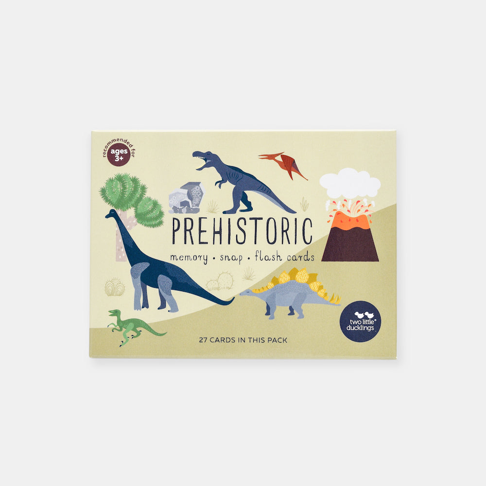 Two Little Ducklings Prehistoric Snap and Memory Game Flash Cards-BabyDonkie