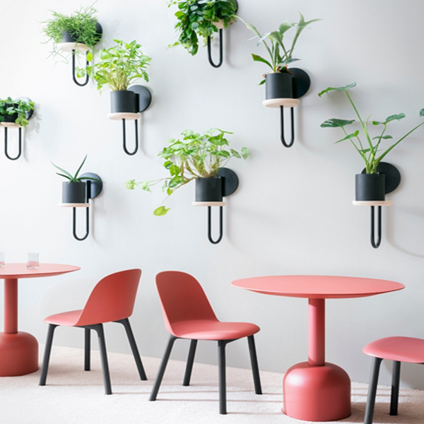 Cigales | Wall Plant Holder