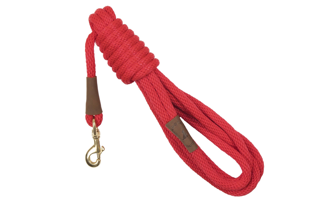 Long Dog Leash Red