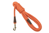 Long Dog Leash Orange