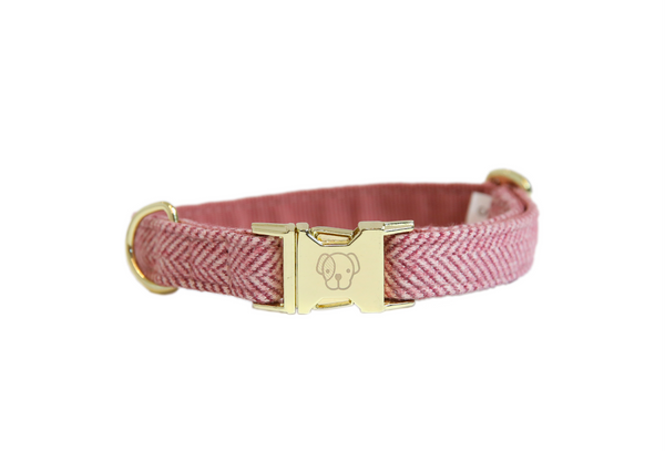Dog Collar Wool Raspberry