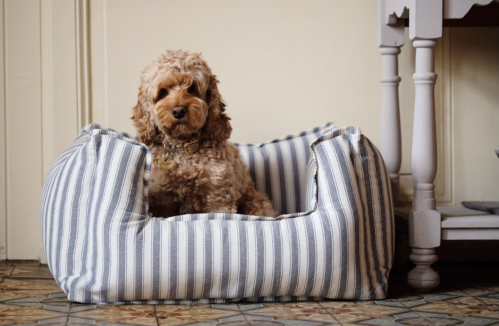 Dog Bed Stripes
