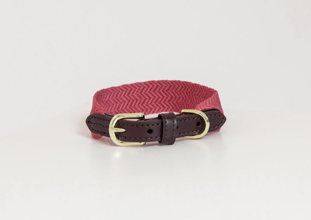 Dog Collar Jacquard Pink