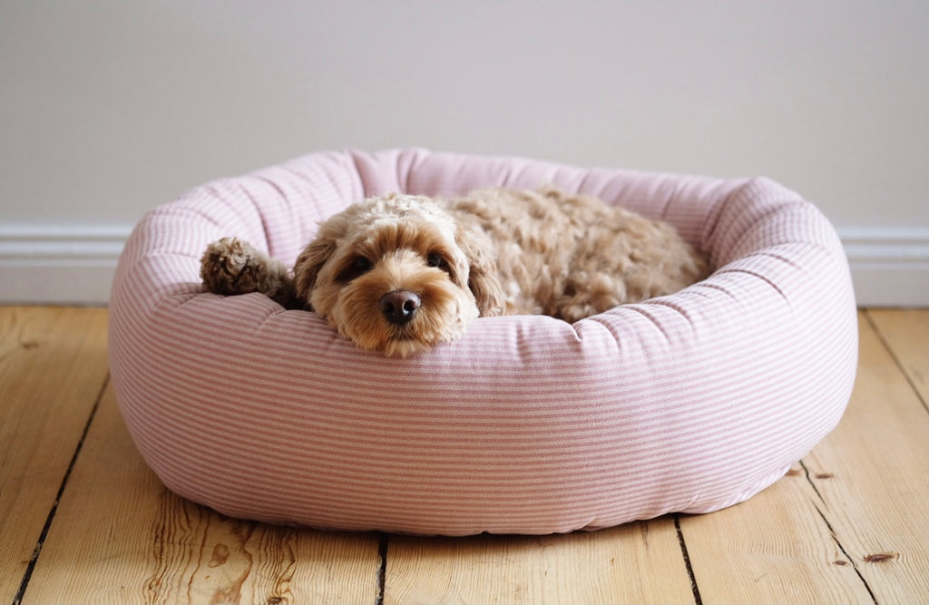 Round Dog Bed Rose Stripes