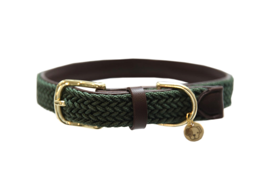 Plaited Nylon Dog Collar Olive Green