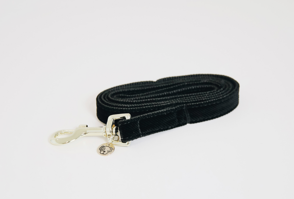 Dog Leash Corduroy Dark Green