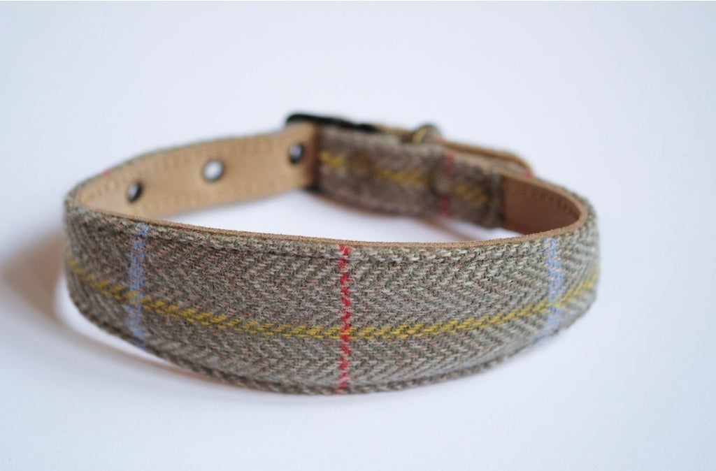 Tweed Whippet Collar Sage