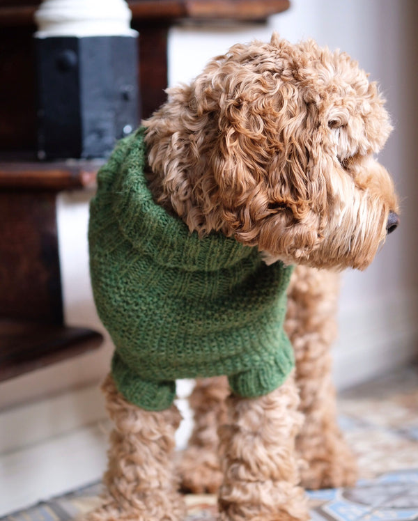 Alpaca Sweater Olive