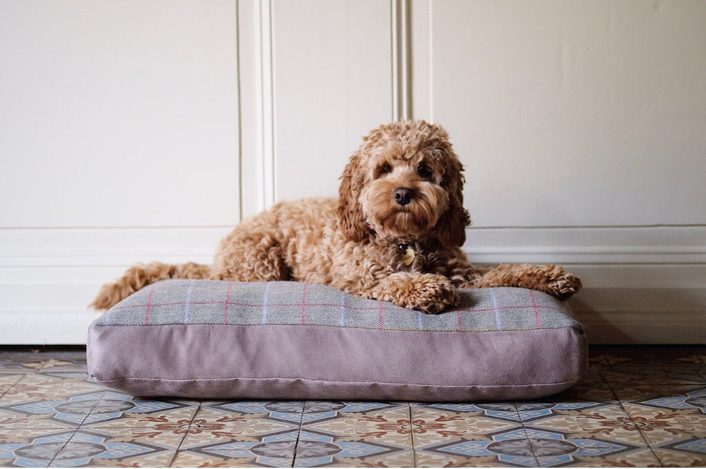 Dog Bed Tweed