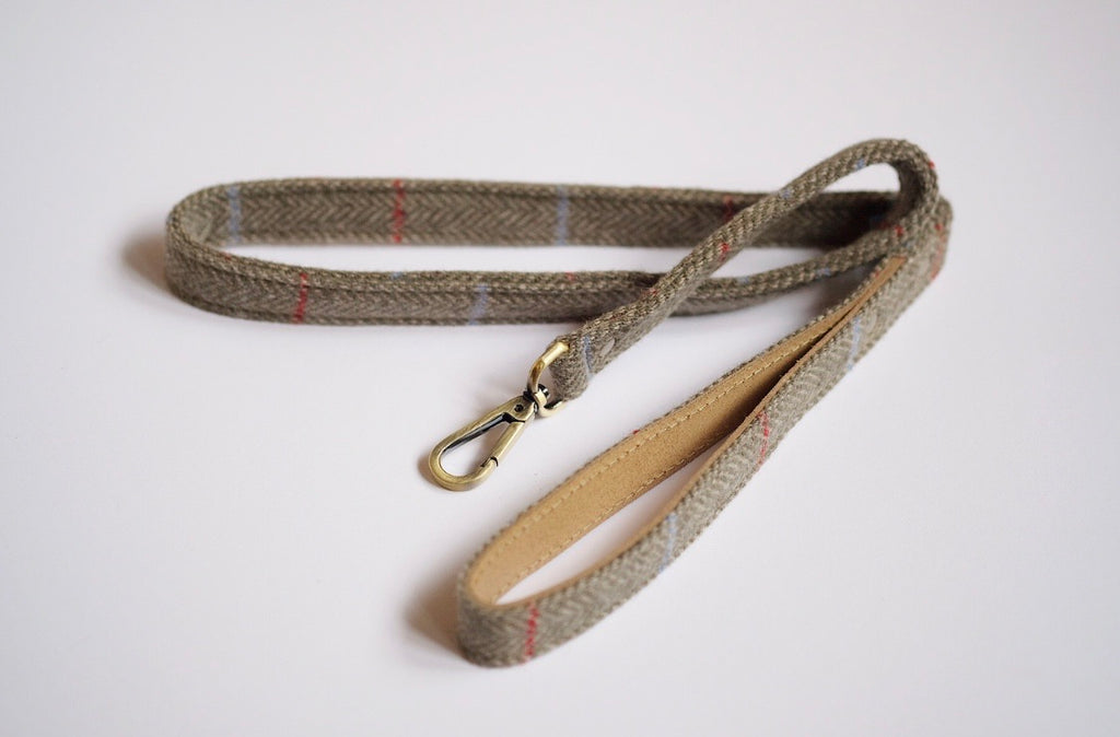 Tweed Dog Leash Sage