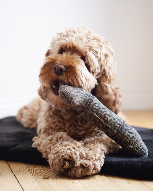 Tweed Bone Dog Toy Brown