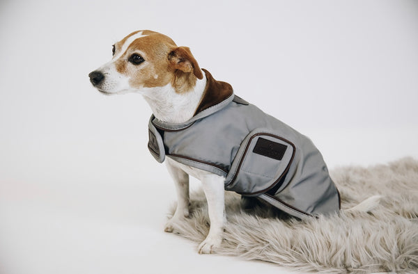 Dog Coat Reflective & Water Repellent