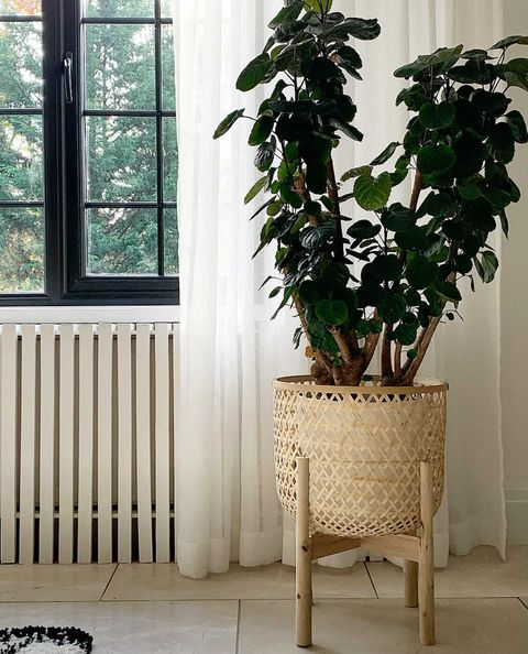 Bamboo Planter and Stand - Alaynashome