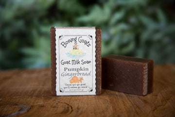Pumpkin Gingerbread Soap