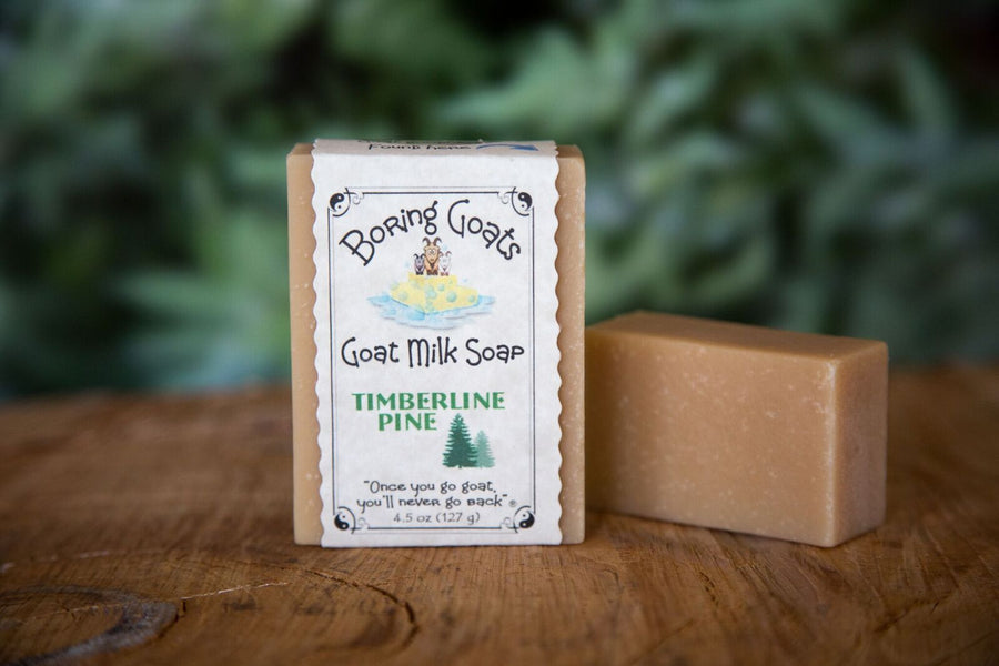Timberline Pine Soap