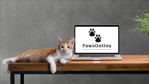 Pawsonline, online pet store based in South Africa