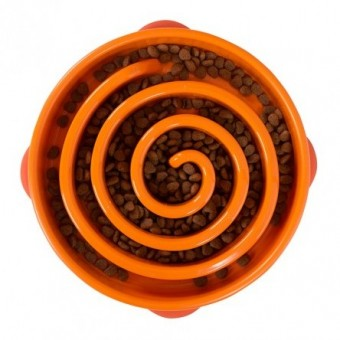 Outward Hound Slow Fun Feeder Bowl