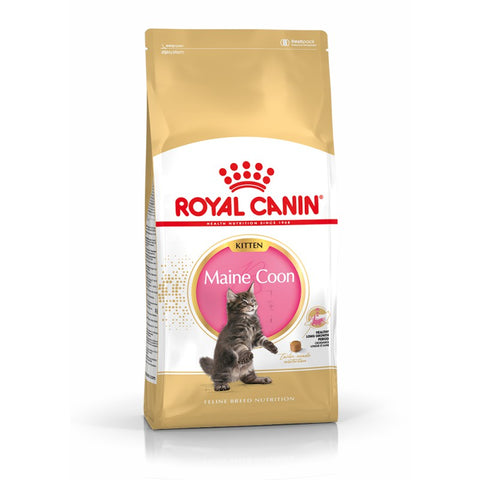 Royal Canin Kitten Maine Coon Food