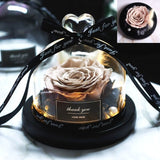 rose eternelle marron sous cloche
