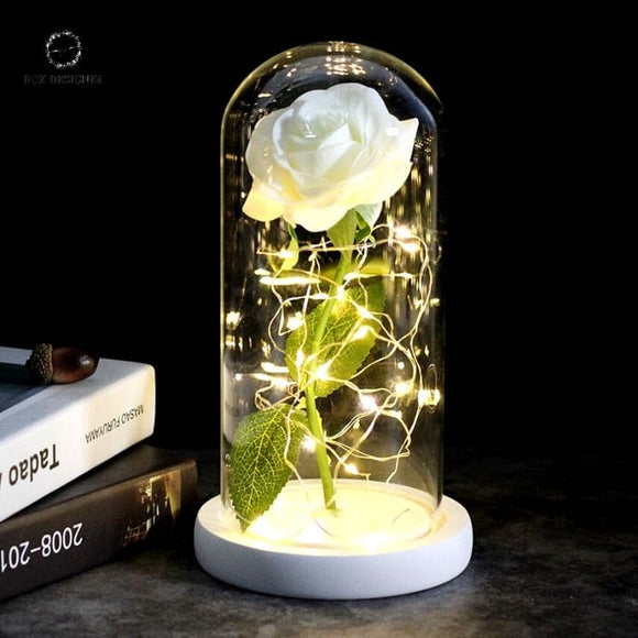 Rose Eternelle Sous Cloche Lumineuse Blanche