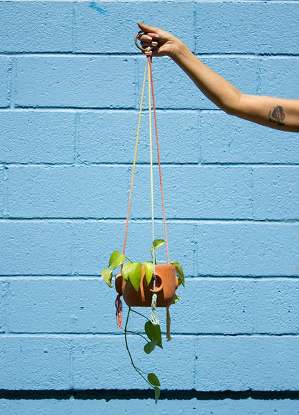 Hoop Planter - Hanging Terracotta Planter