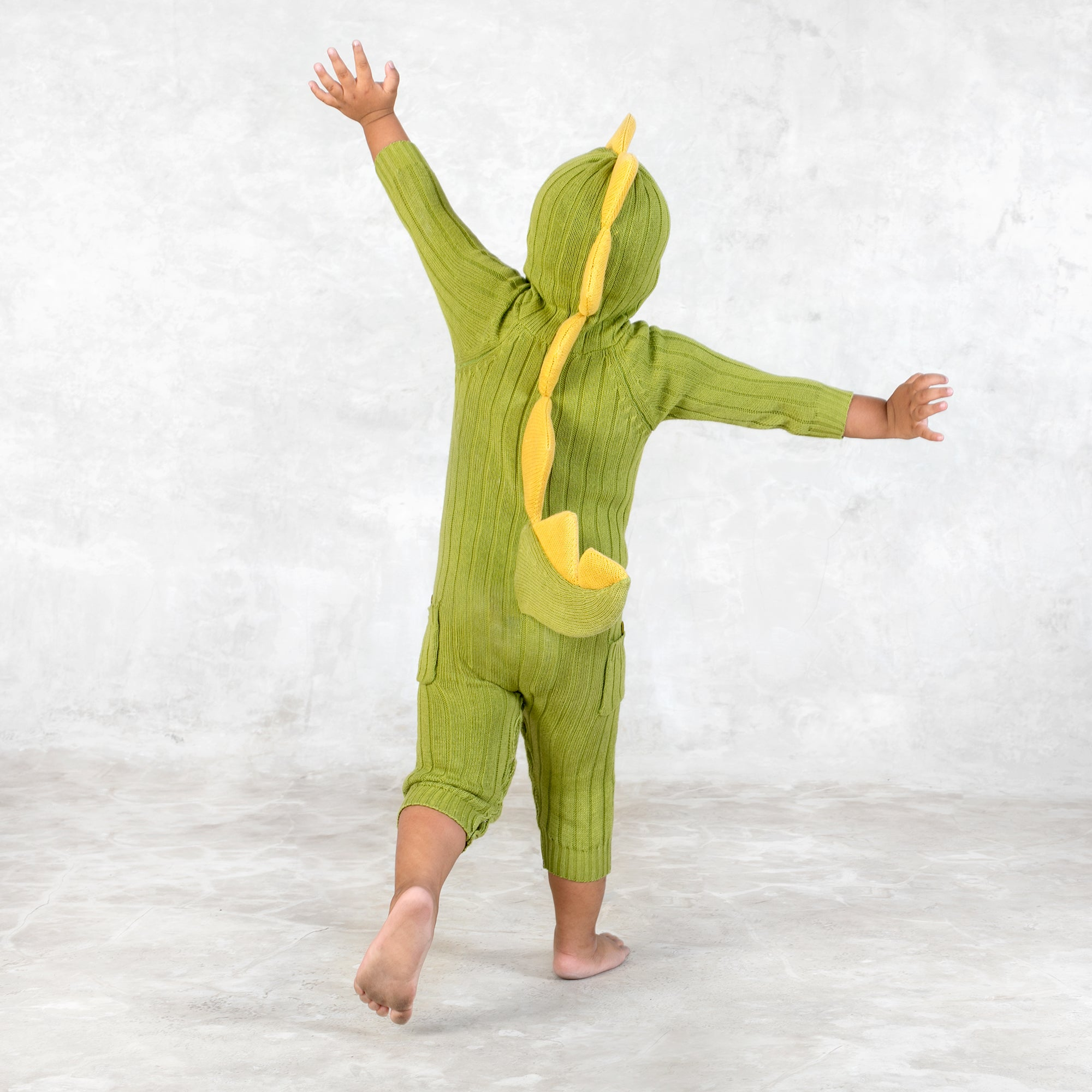 Baby Dino Suit