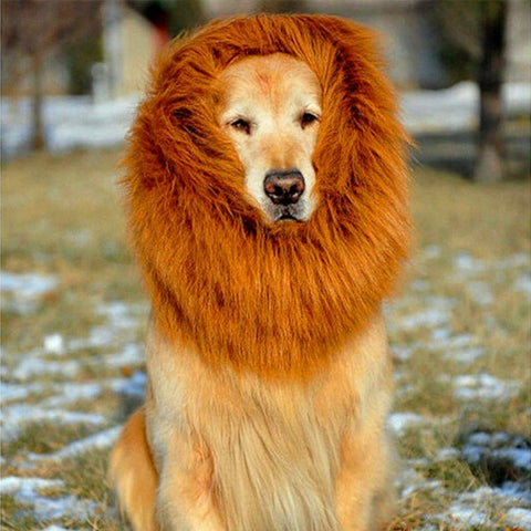Lion Mane Wig for Large Dogs - Treat Yourself Emporium