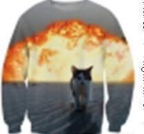 2018 Cute Cat Women/Men Harajuku Sweatshirt 3d Animal Print Galaxy Space Cat Sweatshirt Hoodies Funny Pizza Winter Clothes-noashe