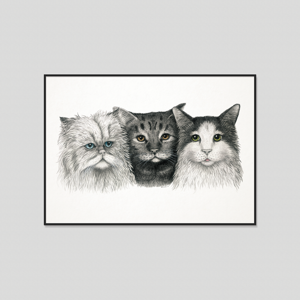 3 cats, art print, poster, katter, chat, chaton, katze