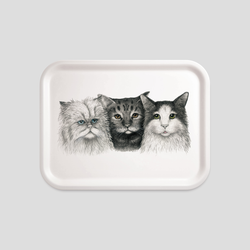 three cats portrait