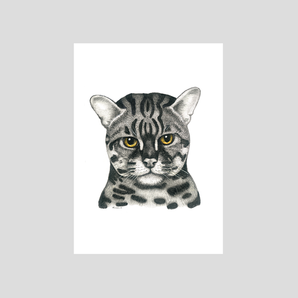 domestic tiger cat art print