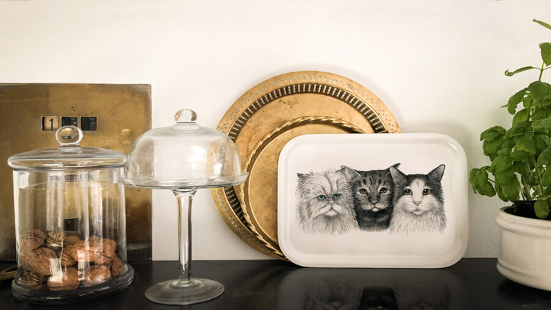 cats on wooden tray