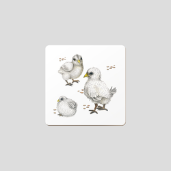 Chicks - Coaster