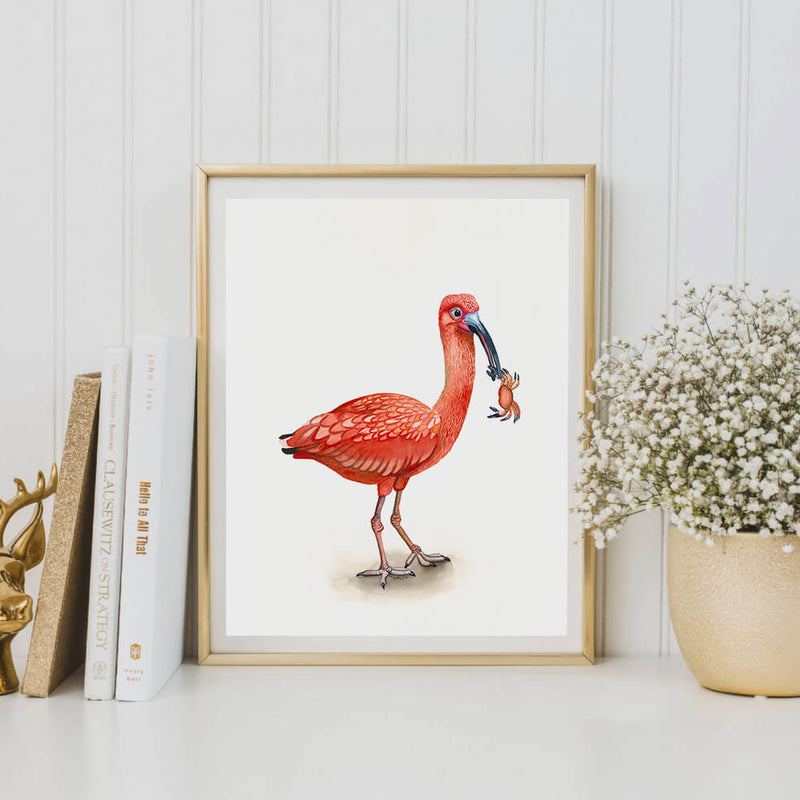 iris the ibis bird art print