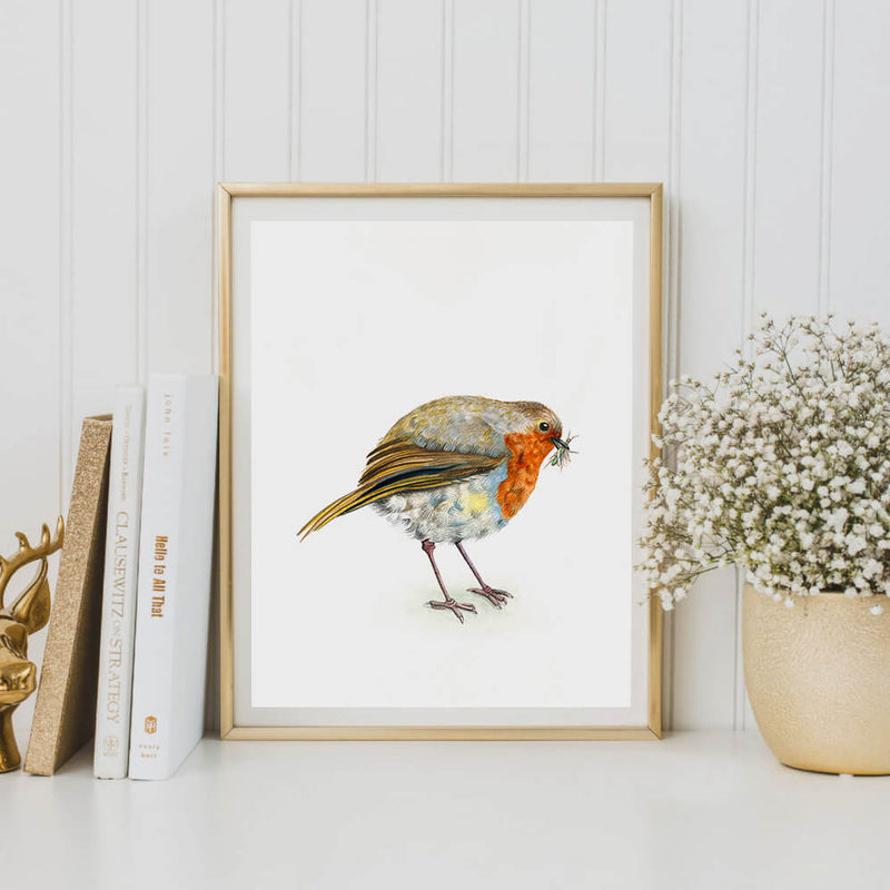 framed robin art print