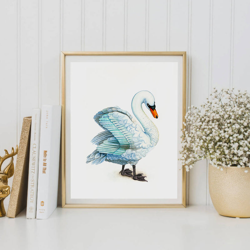 shawn the swan art print