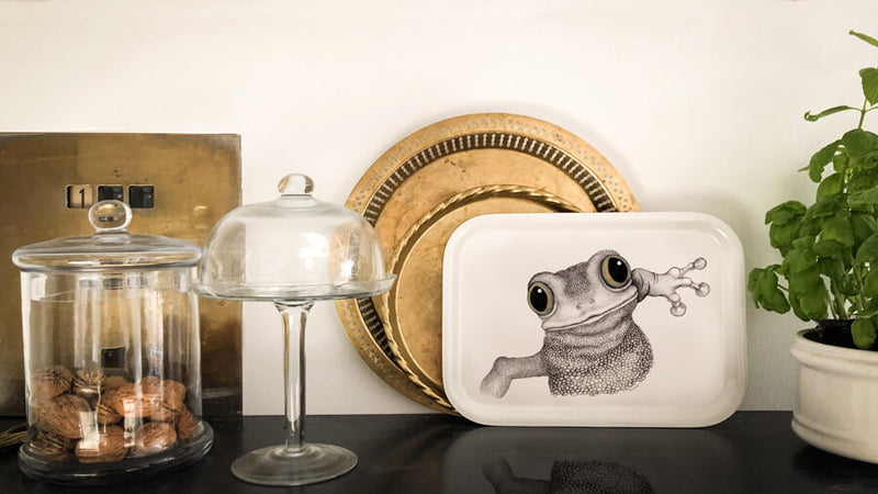 happy frog on tray
