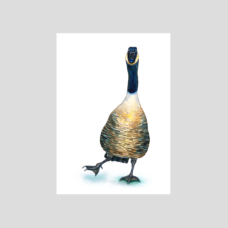 Gus the Goose - Fine art print
