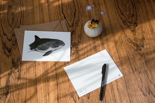 harbour porpoise card
