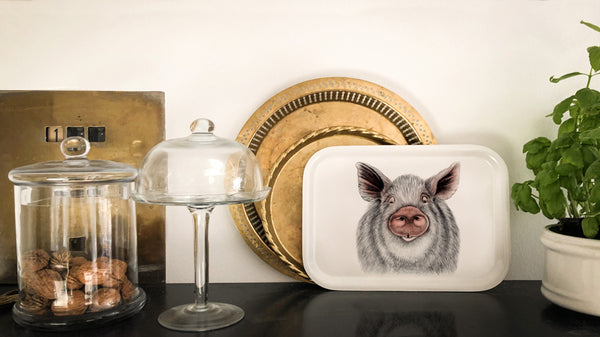 oscar the pig on tray