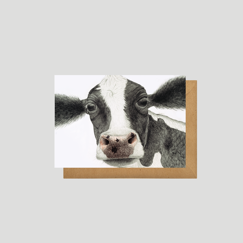 A black and white cow on postcard - by Charlotte Nicolin