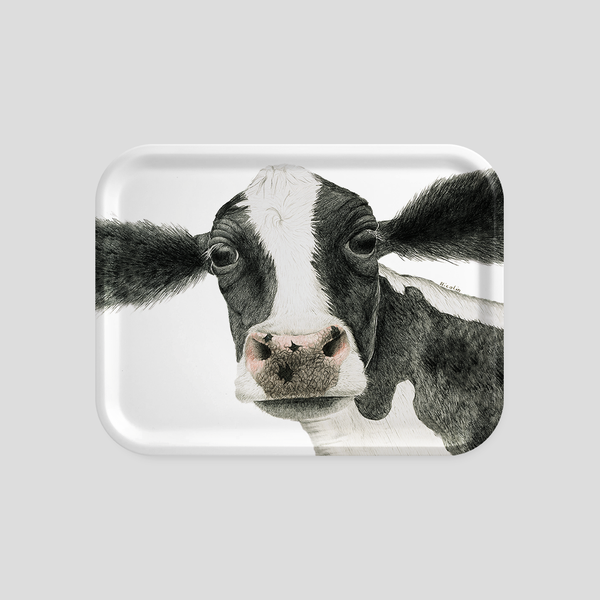 A black and white cow on a tray - by Charlotte Nicolin