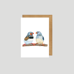 Zebra Finch - Postcard