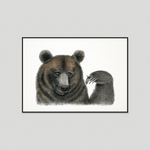 brown bear print with frame