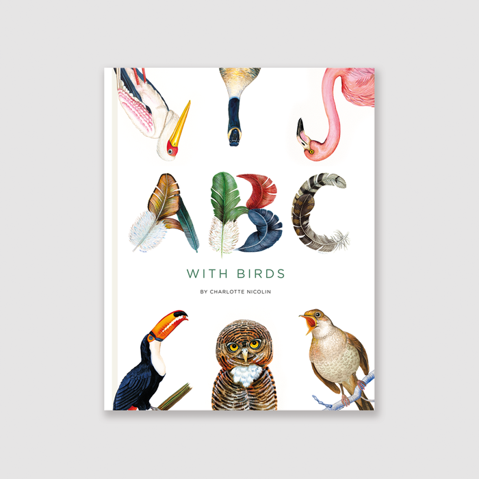abc with birds children's book